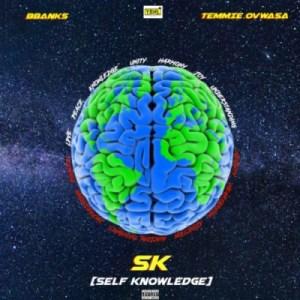 BBanks - Self Knowledge (SK) ft. Temmie Ovwasa